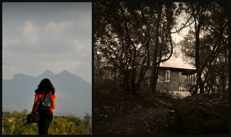 Picnik collage_3